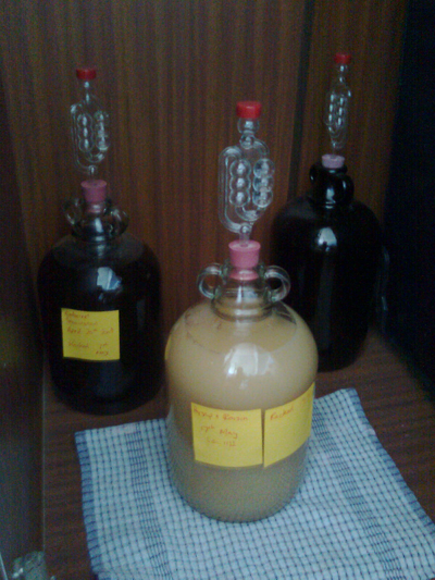 Photo of parsnip wine brewing